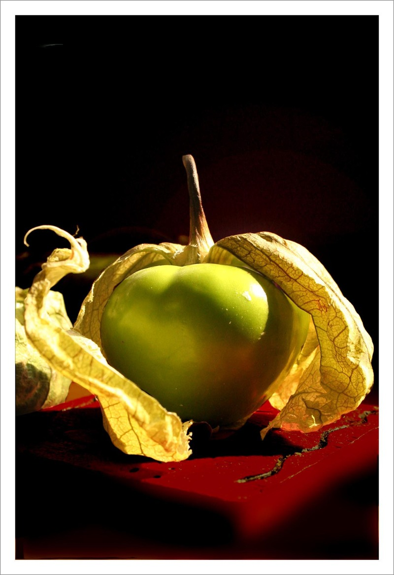 Tomatillo_copy_1
